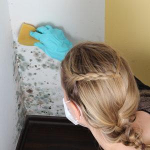 Perchè ho la muffa in camera? | Muffa e umidità in casa