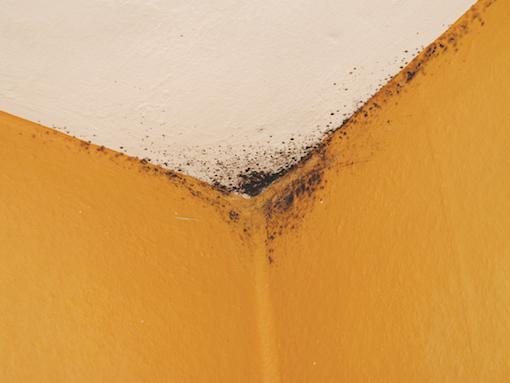 Come aumentare la temperatura delle pareti?